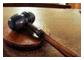 Cronaca  bianca, nera, giudiziaria e rosa